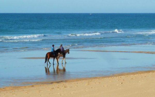 Ausritt am Strand