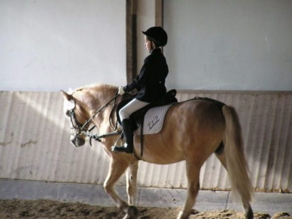 Kind in Turnierkleidung reitet auf einem Pferd in einer Reithalle