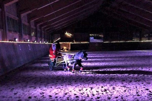 Shettlandpony vor einer Kutsche in einer Reithalle mit einem Weihnachtsmann als Kutschfahrer