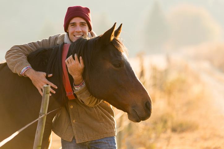 Ist mein Pferd krank? > Symptome richtig deuten - Hufglück <3