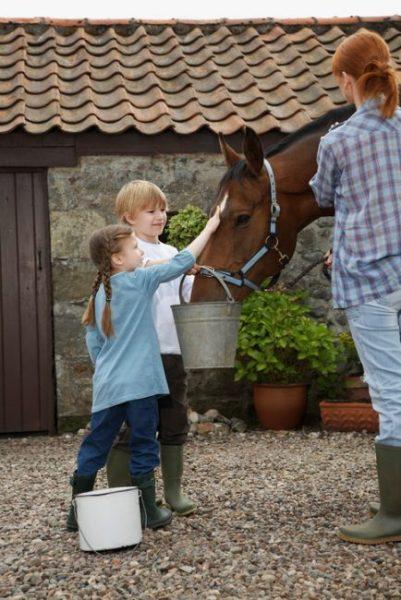 zwei Kinder mit einem Eimer füttern und streicheln ein Pferd, dass von einer Frau gehalten wird