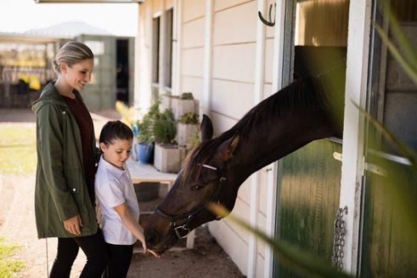 Frau und Kind füttern ein Pferd, dass seinen Kopf aus dem Boxenfenster streckt